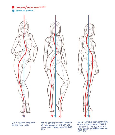 Today's Drawing Class: Drawing the Female Body |  Drawing the human figure…