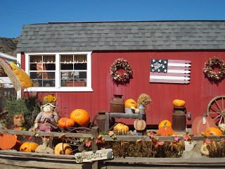 Stroller Adventures: Oma's Pumpkin Patch.