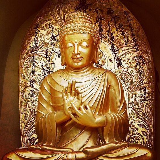 #spiritual #faith #faithful #yoga #pray #prayers #buddhism #believe #coexist #spirituality #calm #mind #soul #hope #wisdom #compassion #forgiveness #chakra #knowledge #meditation #life #meditate #guidance #buddha #dalailama #PeaceOnEarth #LoveAndLight