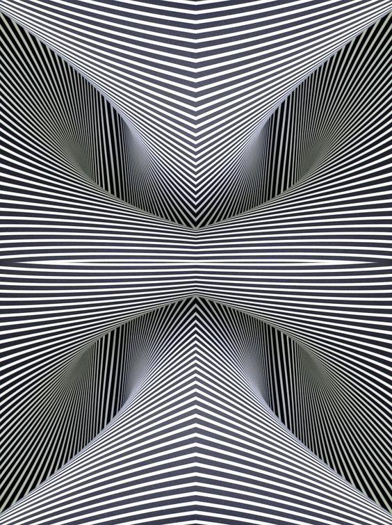 .: Black And White, Optical Illusion Art, Black White, Optical Art, Op Art, Optical Illusions Art