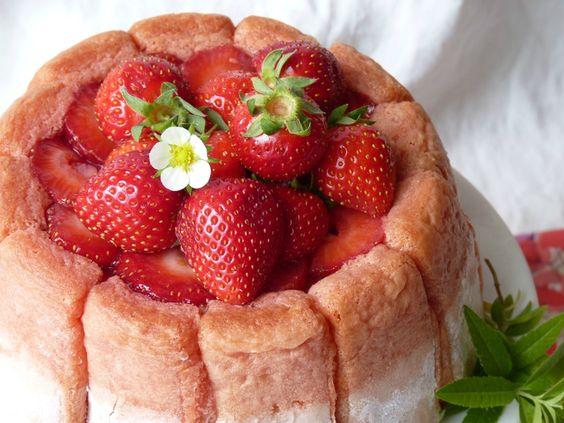 Charlotte fraise/rhubarbe