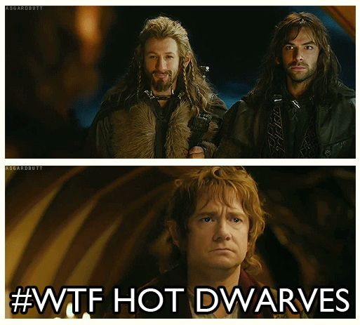 Everyone's reaction to Fili and Kili.