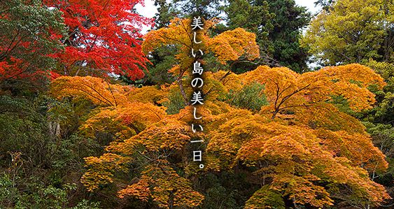 広島県廿日市市 世界遺産「嚴島神社」に最も近い宿 宮島グランドホテル有もと