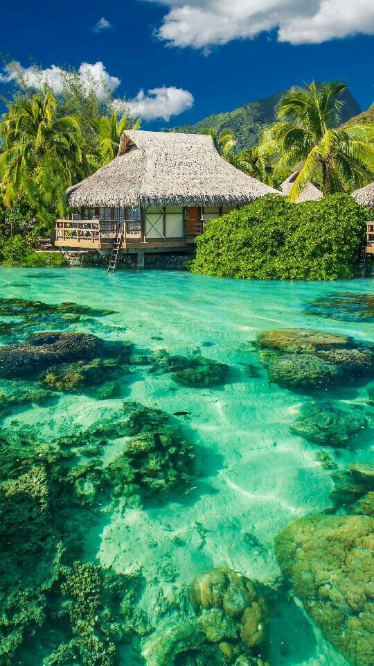 The Most Beautiful Cottages Slaylebrity Beach Wallpaper Ocean Vacations Beautiful Places