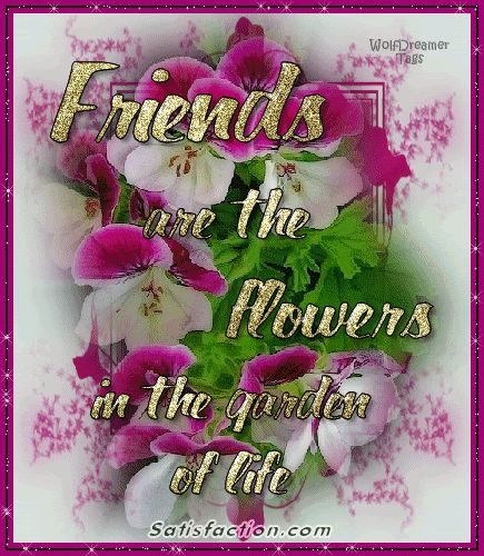 Beautiful Flowers Images With Friendship Quotes: Friends Are The Flowers In The Garden Of Life Friendship