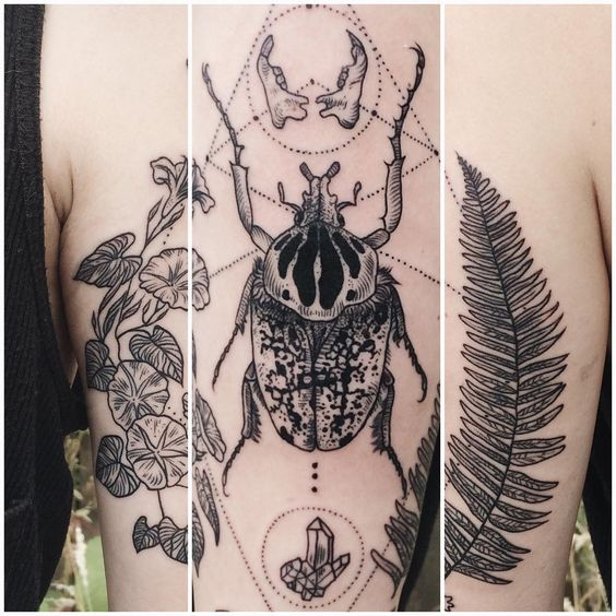 Wraparound of Rorschach-esque Goliath beetle with crescent moon, rodent jaws, quartz, morning glory, fern frond, and two twig wands. ✨Thanks Niki!