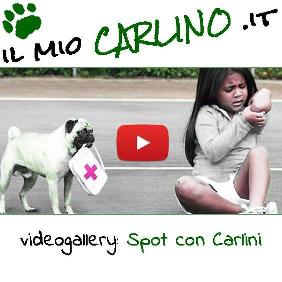 Raccolta di divertenti ed emozionanti spot con protagonisti i Carlini! #carlini #carlino #spot #commercials #vodafone #doritos