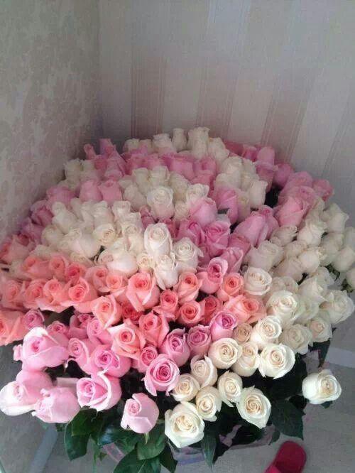Flowers.  Girls best friend.  Bouquets.  Pretty & beautiful.  Colours