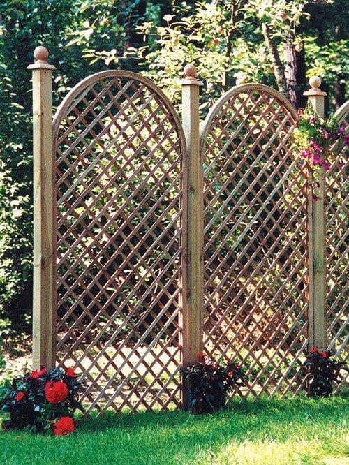 Trejaze I Bramki Ogrodowe Jakie Rosliny Wybrac Na Podpory Planting Fields Arboretum Arboretum Plants