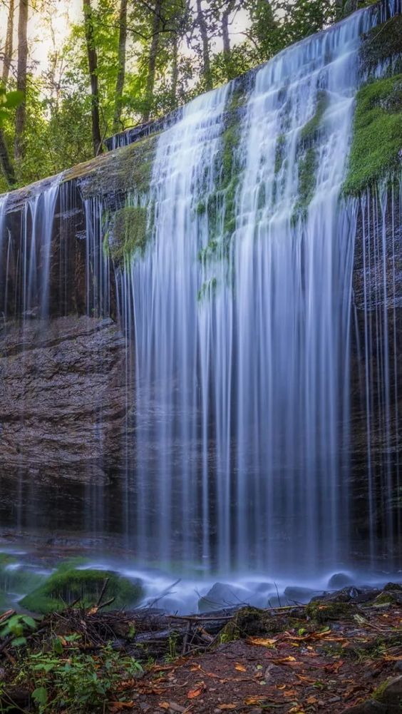 Forest Waterfalls Travel Adventure Vacation Holiday Waterfall Landscape Forest Waterfall Waterfall Photography