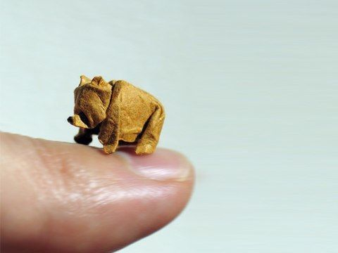 Artist Dinh Truong Giang uses a 'wet fold' origami technique to make these paper miniatures. @Kim Kiwi