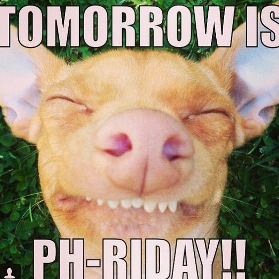"Phteven Dog ""Tomorrow is Ph-riday!"" | Central Jersey Pediatric Dentistry & Orthodontics | #EastBrunswick | #NJ | www.kiddent.com:"