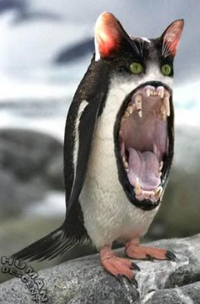 Penguin will eat you!