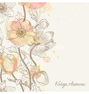 Floral y fondo decorativo del vector