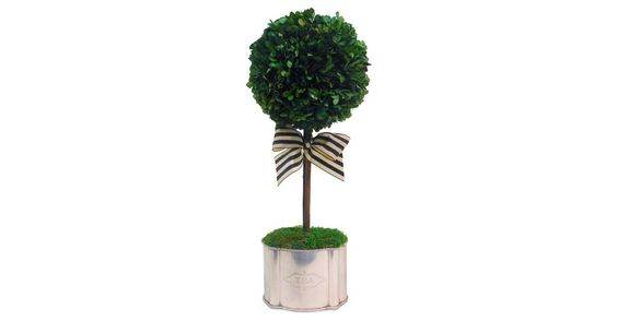 A verdant boxwood ball tops a silver tea container for a beautiful addition to any table or counter. A bow adds extra flourish.Michael Hansen, owner of The French Bee, has traveled the globe...