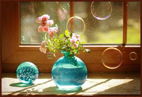 Schau dir einen Baum, eine Blume, eine Pflanze an. Lass dein Gewahrsein darauf ruhen. Wie still sie sind, wie tief sie im Sein wurzeln. Lass zu, dass die Natur dich die Stille lehrt.  Eckhart Tolle — hier: Neverland.
