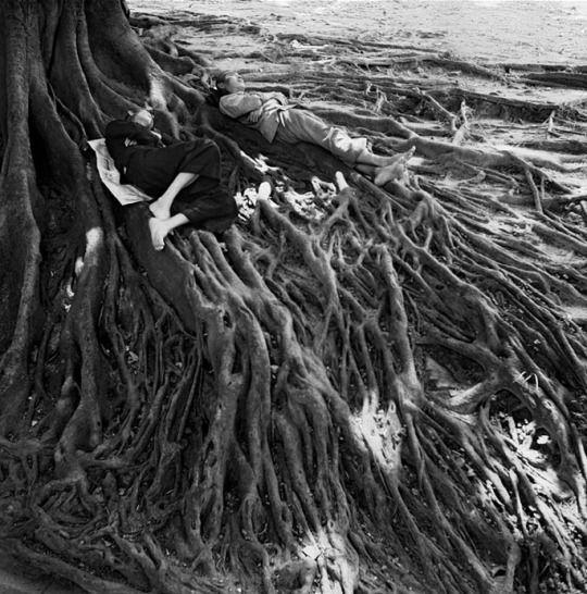 Untitled (Hong Kong, 1952) © Werner Bischof / Magnum Pictures (1916-1954)