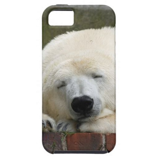 Polar bear iPhone 5 cases