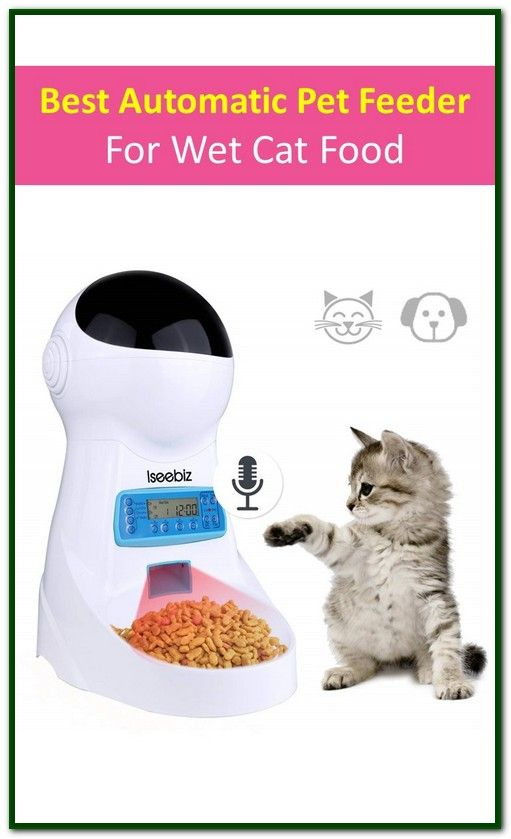 Best Automatic Pet Feeder For Wet Cat Food With Images Pet Feeder Cat Food Wet Cat Food
