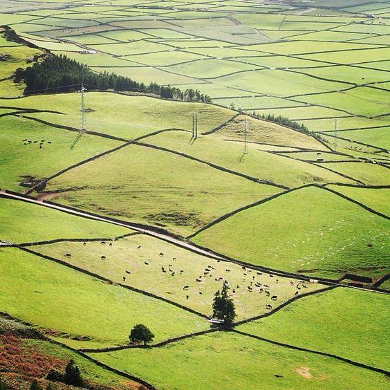 visitportugal By @miguelcarvalhousa #visitportugal #azores #terceira #green #nature, Açores, Vale da Achada