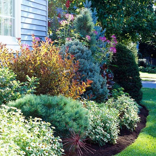 Use Evergreens to Make an Impact Gardens Different