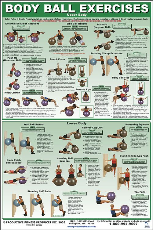 Body ball exercises upper and lower body workout, Go To ...