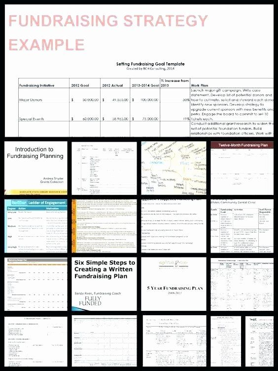 Non Profit Development Plan Template Fresh Fundraising Template Word Schedule Calendar Nonprofit Fundraising Strategies How To Plan Goals Template