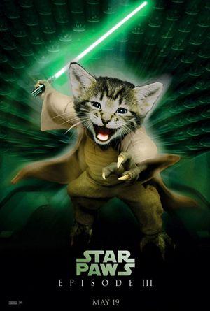Hasil gambar untuk cat movie parody