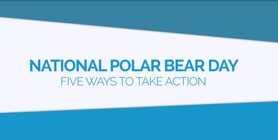 National Polar Bear Day: Five Ways to Take Action