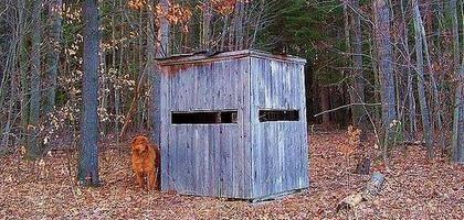 Homemade Deer Box Blinds | eHow UK
