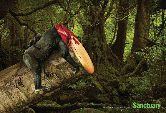 """The slogan on these ads, ""When the wood go, wildlife goes"" drives home the point made by these macabre images – when you cut down habitats, you might as well kill the animals that live there as well. Rainforests contain as much as 80% of the world's biodiversity, so their rapid destruction in South America and Asia is a serious problem."" 