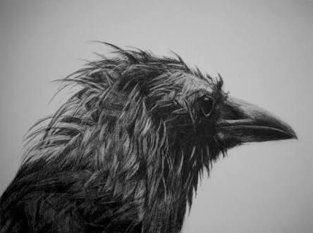 crow woman mythology - Google Search