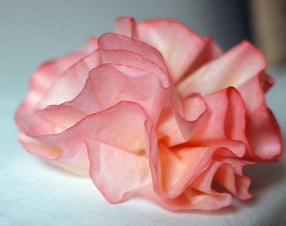 Fleur en filtre à café | La cabane à idées