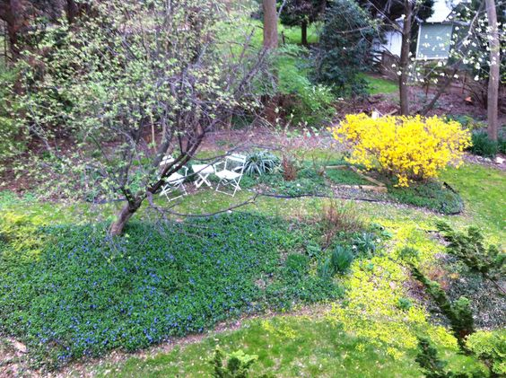 My garden just as Spring is beginning.