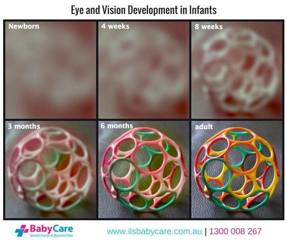 Baby milestones: 1 to 6 months | BabyCenter
