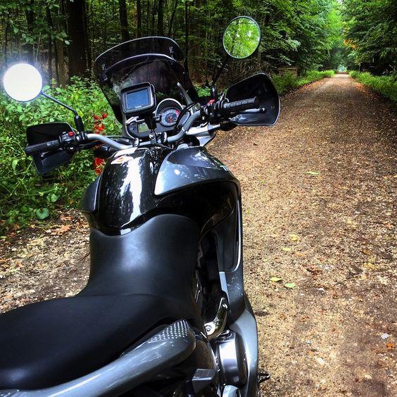 Herbsttour zum Reichswald