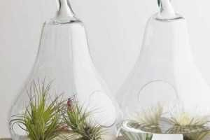 Modern Terrariums - Terrariums have had their place in homes of decades past, but this home decor trend is set for revival as several modern modern terrariums make the...
