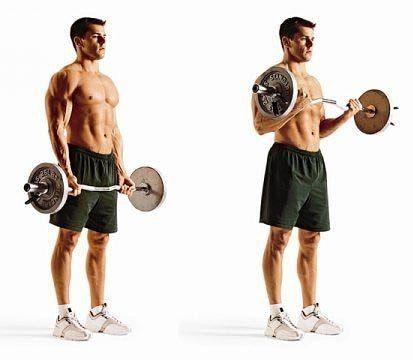 #фитнес #тренировки #самый_результативный_проект #BodyFit #Спортлайф #Витаспорт  Сгибание рук с EZ грифом - советы  Нагрузка больше ложится на внутреннюю головку бицепса, чем у аналога с прямым грифом. В остальном - суть та же. Кроме этого упражнение с изогнутым грифом комфортнее выполнять, так как кисть находится в более удобном положении.  1. Чем сильнее изгиб грифа, тем большая нагрузка ложится на внутреннюю головку бицепса.  2. Не забрасывайте руки сильно высоко вверх. Иными словами, не…
