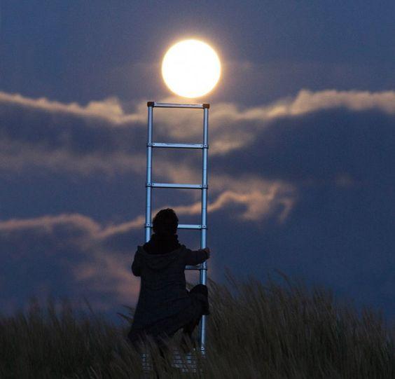 una escalera para bajar la luna: