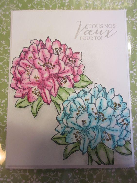 SU - kit Pensées positives Coloration réalisée avec mes crayons Prismacolor !!!