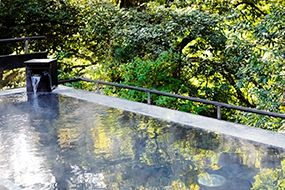 Hotel Hatsuhana is a hot spring inn in Hakone Yumoto [Official]