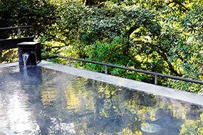 Hotel Hatsuhana is a hot spring inn in Hakone Yumoto [Official]
