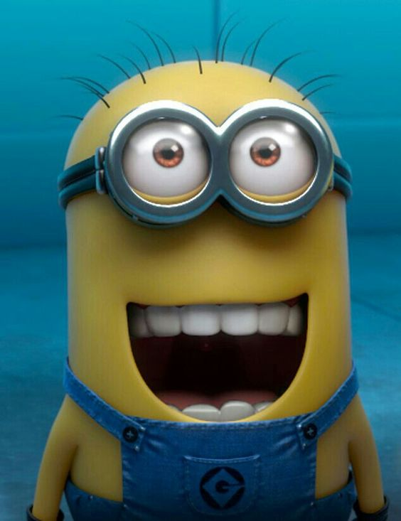 Image result for happy minion face