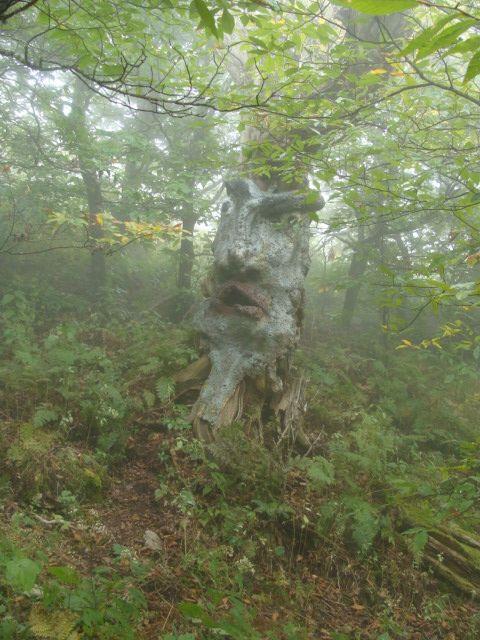 Изглежда, че той се ликвидира за тирада :) Вижте по-готини природни лица на www.bushcraftuk.com/forum/showthread.php?t=115232