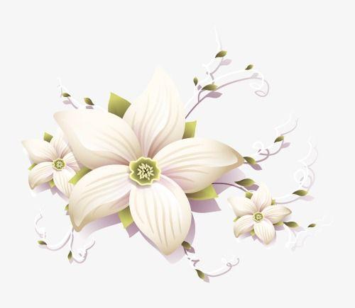 انيقه ثلاثية الابعاد زخارف نباتية Flower Pictures Floral Plants