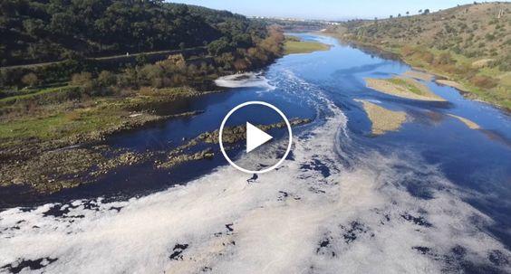 Português Faz Vídeo Chocante Onde Revela a Poluição GRAVE No Rio Tejo