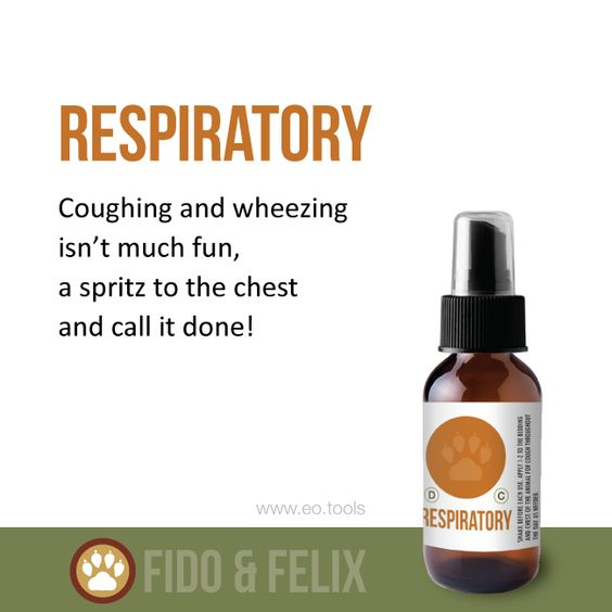 Coughing Or Wheezing Dog Or Cat This Spray Can Help Your Dogs And