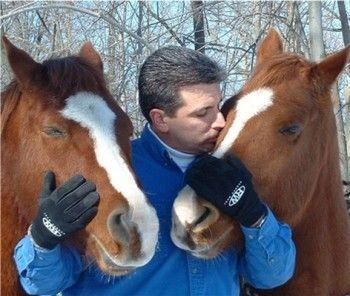 Como cuidar un Caballo http://www.mascotadomestica.com/articulos-sobre-caballos/como-cuidar-un-caballo.html