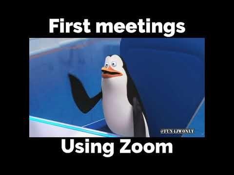 4 First Meetings Using Zoom Youtube Class Memes Funny School Memes Meetings Humor