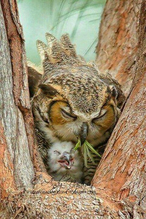 Mommy n baby
